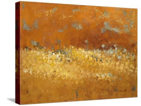 Flower Fields II-Lanie Loreth-Stretched Canvas Print