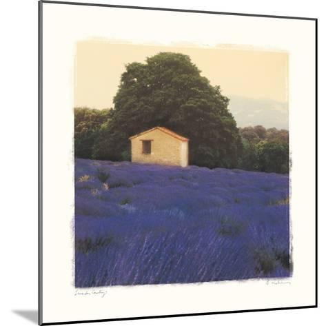 Lavender Country-Amy Melious-Mounted Premium Giclee Print