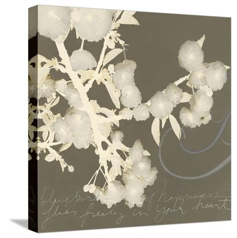 Wishes and Leaves II-Amy Melious-Stretched Canvas Print