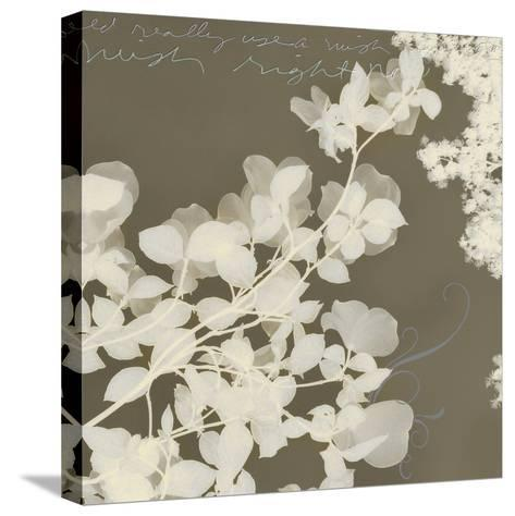 Wishes and Leaves I-Amy Melious-Stretched Canvas Print
