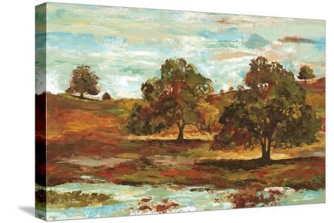 Landscape II-Gregory Gorham-Stretched Canvas Print