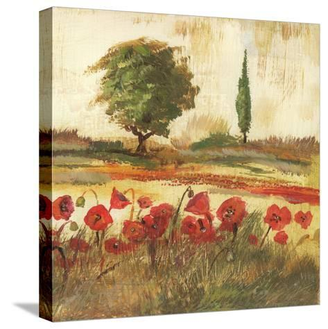 Poppy Field III-Gregory Gorham-Stretched Canvas Print