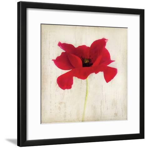Red I-Amy Melious-Framed Art Print