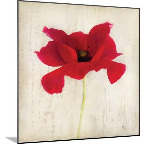 Red I-Amy Melious-Mounted Art Print