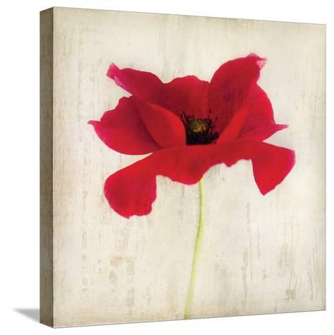 Red I-Amy Melious-Stretched Canvas Print