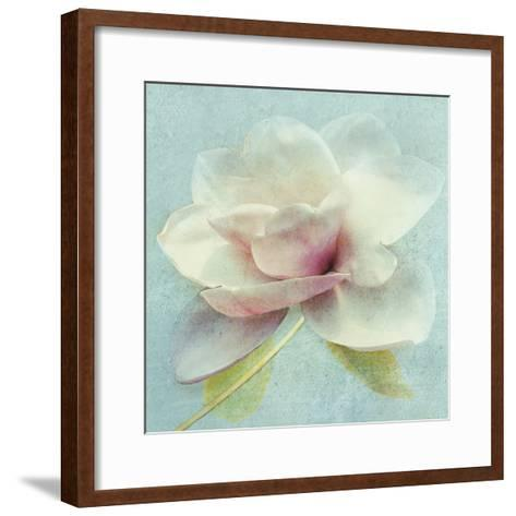 Pond Lily Sq-Amy Melious-Framed Art Print