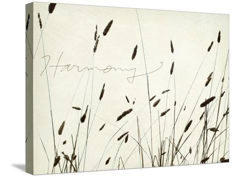 Grass Harmony-Amy Melious-Stretched Canvas Print