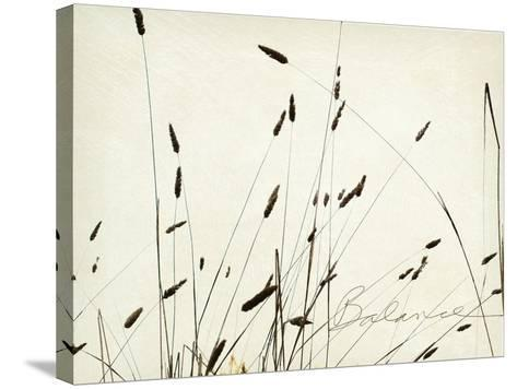 Grass Balance-Amy Melious-Stretched Canvas Print