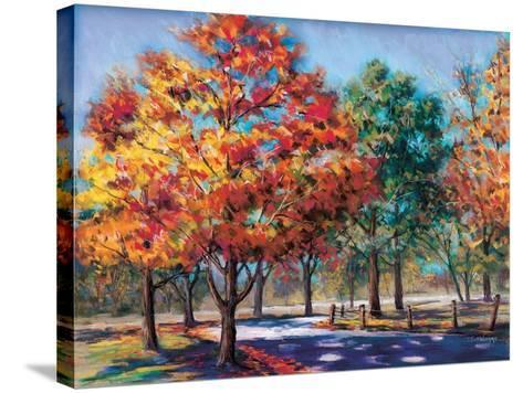 Fall Brilliance I-Todd Williams-Stretched Canvas Print