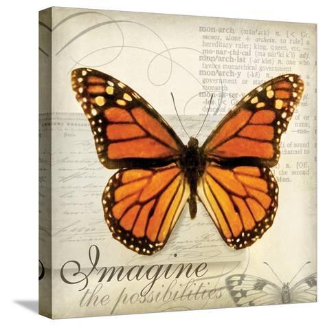 Imagine Possibilites-Amy Melious-Stretched Canvas Print