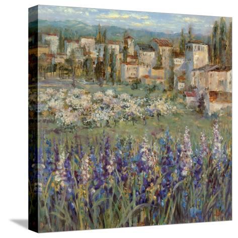 Provencal Village I-Michael Longo-Stretched Canvas Print
