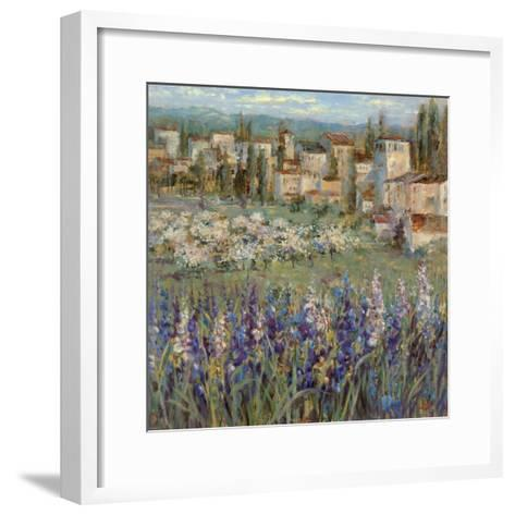 Provencal Village I-Michael Longo-Framed Art Print