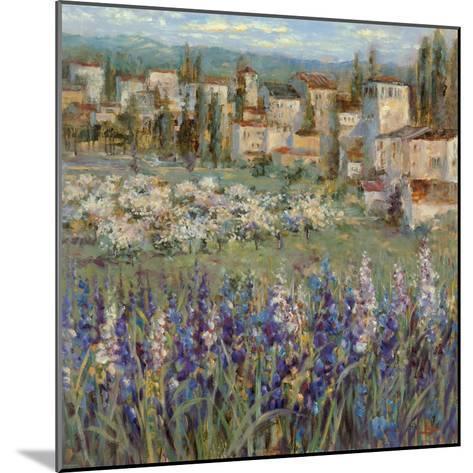 Provencal Village I-Michael Longo-Mounted Premium Giclee Print