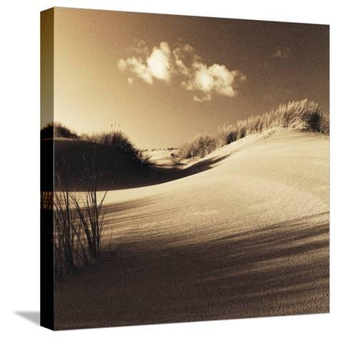 Drifting Sands IV-Jo Crowther-Stretched Canvas Print
