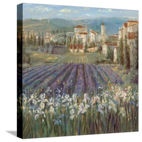 Provencal Village-Michael Longo-Stretched Canvas Print