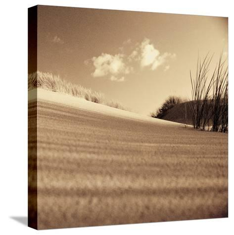 Drifting Sands III-Jo Crowther-Stretched Canvas Print