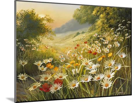 Evening Sun-Mary Dipnall-Mounted Premium Giclee Print