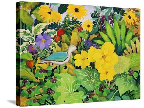 Autumn Garden-Christopher Ryland-Stretched Canvas Print
