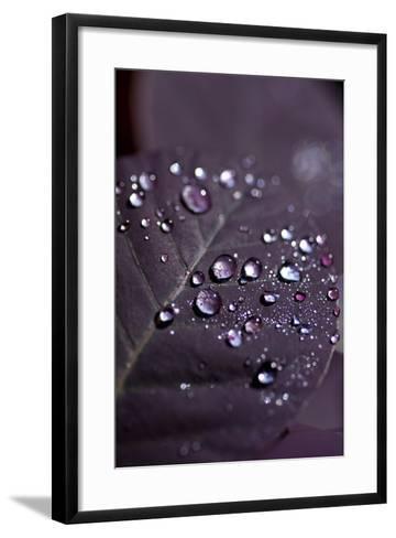 Purple Leaves II-K.B. White-Framed Art Print