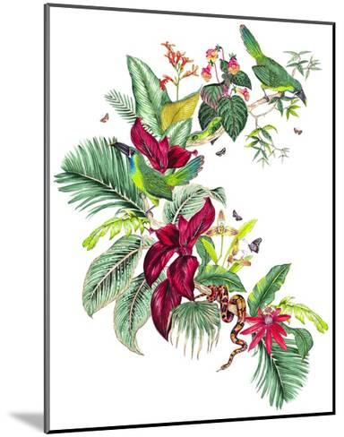 Nicaragua Placement-Jacqueline Colley-Mounted Giclee Print