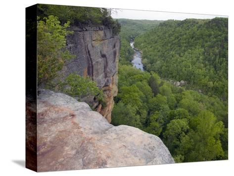 Big South Fork National River and Recreation Area, Tennessee, USA-Clint Farlinger-Stretched Canvas Print