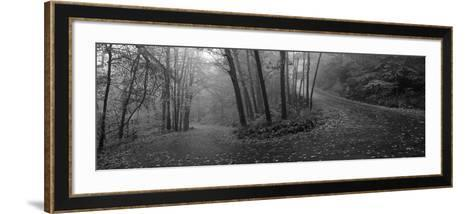 Winding Road Through Mountainside in Autumn, Monadnock Mountain, New Hampshire, USA--Framed Art Print