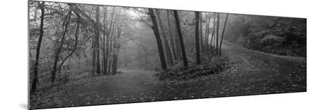 Winding Road Through Mountainside in Autumn, Monadnock Mountain, New Hampshire, USA--Mounted Photographic Print