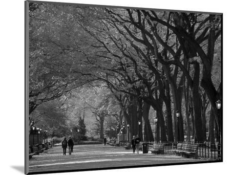 Central Park, New York City, Ny, USA-Walter Bibikow-Mounted Photographic Print