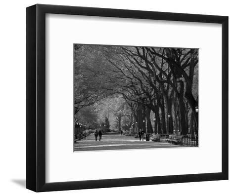 Central Park, New York City, Ny, USA-Walter Bibikow-Framed Art Print