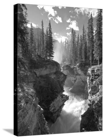 Athabasca Falls Waterfall, Jasper National Park, Alberta, Canada-Michele Falzone-Stretched Canvas Print