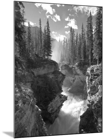 Athabasca Falls Waterfall, Jasper National Park, Alberta, Canada-Michele Falzone-Mounted Photographic Print