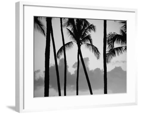 Salt Water Pond State Park, Kauai, Hawaii, USA, Pacific-McCoy Aaron-Framed Art Print