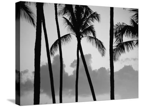 Salt Water Pond State Park, Kauai, Hawaii, USA, Pacific-McCoy Aaron-Stretched Canvas Print