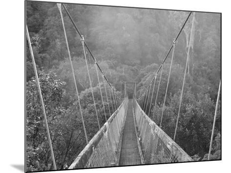 Swingbridge, Motu Falls, Motu, Gisborne, North Island, New Zealand, Pacific-Jochen Schlenker-Mounted Photographic Print