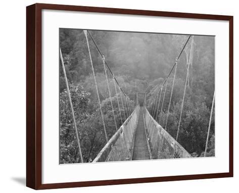 Swingbridge, Motu Falls, Motu, Gisborne, North Island, New Zealand, Pacific-Jochen Schlenker-Framed Art Print