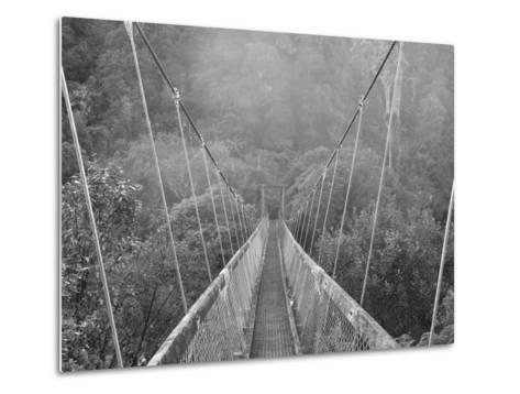 Swingbridge, Motu Falls, Motu, Gisborne, North Island, New Zealand, Pacific-Jochen Schlenker-Metal Print