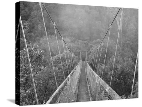 Swingbridge, Motu Falls, Motu, Gisborne, North Island, New Zealand, Pacific-Jochen Schlenker-Stretched Canvas Print