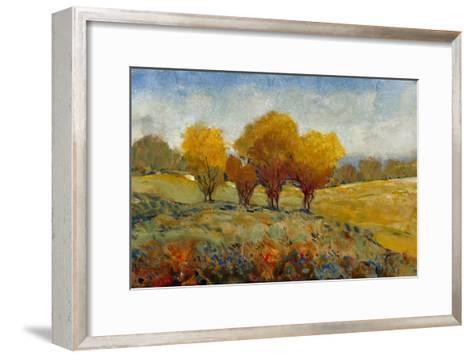 Vivid Brushstrokes I-Tim O'toole-Framed Art Print