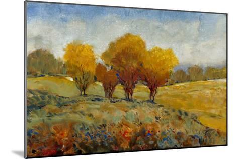 Vivid Brushstrokes I-Tim O'toole-Mounted Art Print