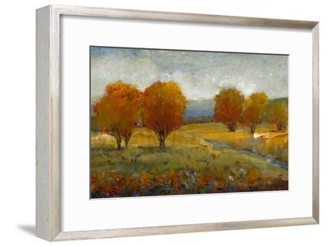 Vivid Brushstrokes II-Tim O'toole-Framed Art Print