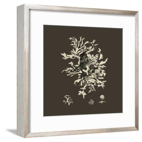 Chocolate & Tan Coral III-Vision Studio-Framed Art Print
