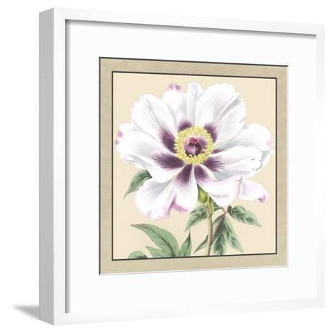 Peony Collection VI-Vision Studio-Framed Art Print