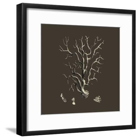 Chocolate & Tan Coral I-Vision Studio-Framed Art Print