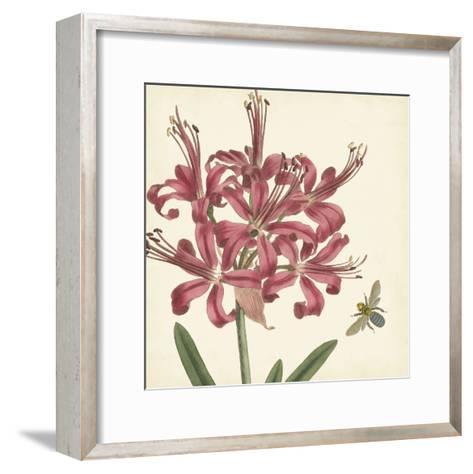 Garden Delight II--Framed Art Print