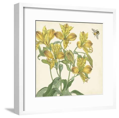 Garden Delight VI--Framed Art Print