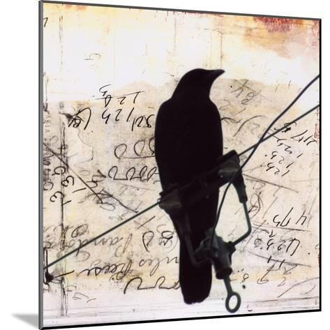What Crows Reveal I-Ingrid Blixt-Mounted Art Print