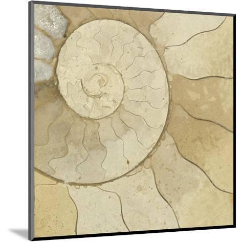 Organic Elements V-Vision Studio-Mounted Art Print