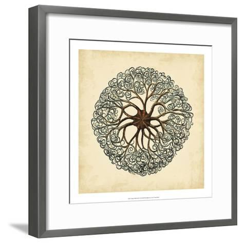 Gems of the Sea II-Vision Studio-Framed Art Print