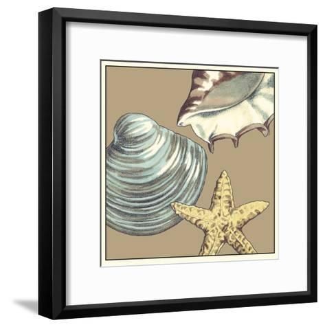 Shell Trio on Khaki IV-Megan Meagher-Framed Art Print