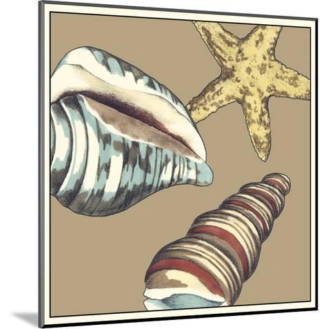 Shell Trio on Khaki I-Megan Meagher-Mounted Art Print